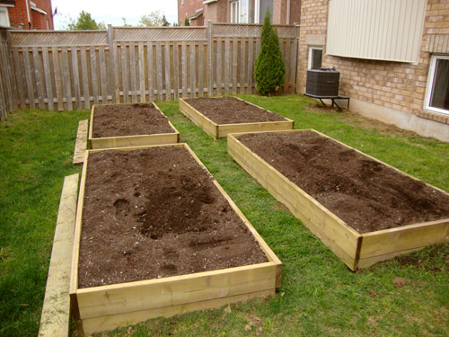 Building A Vegetable Garden The Gardening